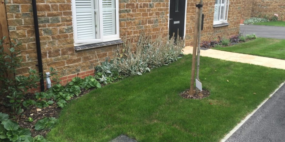 Garden Maintenance & Lawn Treatments, Hook Norton.