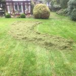 Wappenham Lawn care