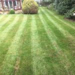 Wappenham Lawncare