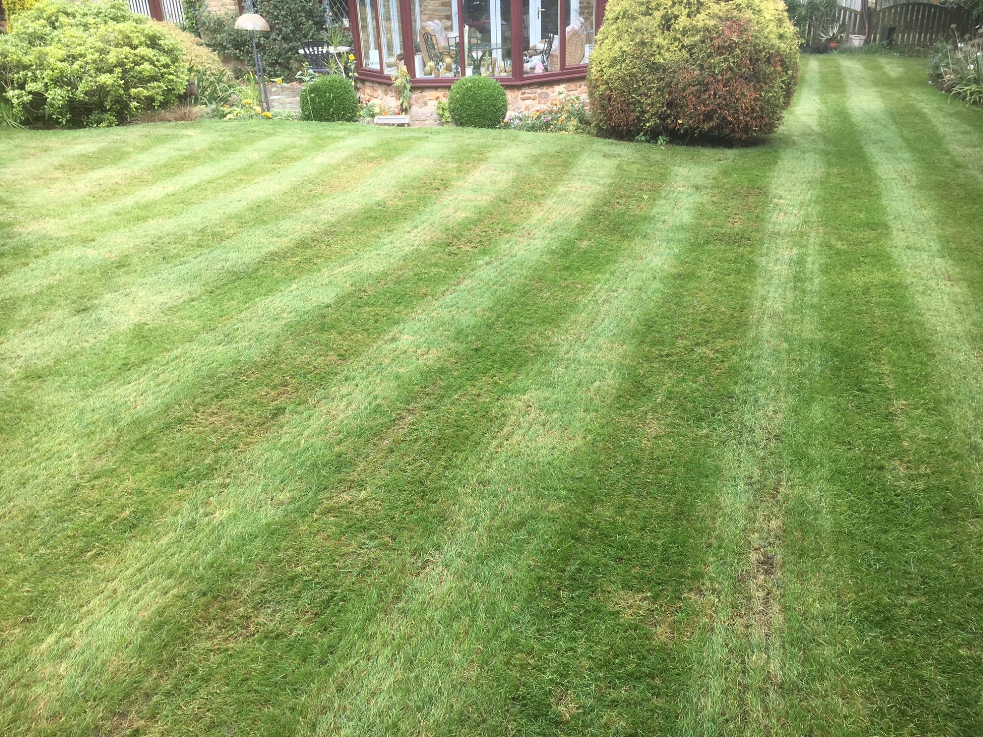 New Lawncare treatments Wappenham, Northamptonshire