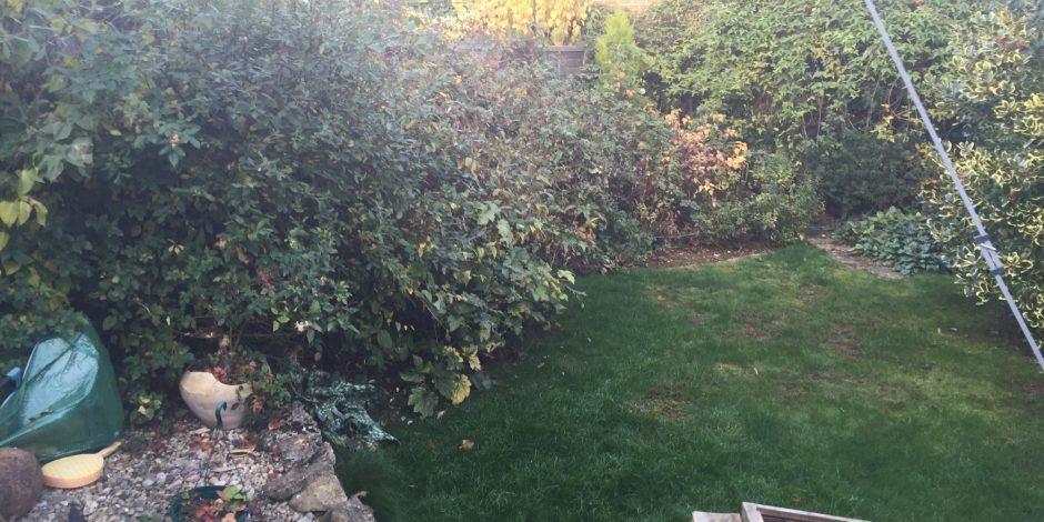 Garden makeover, Hook Norton