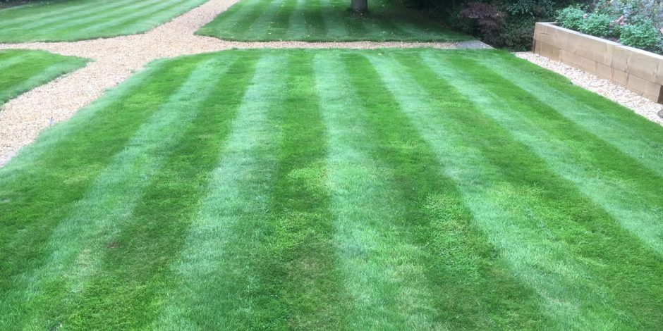 New Lawncare Maintenance, Thorpe Mandeville