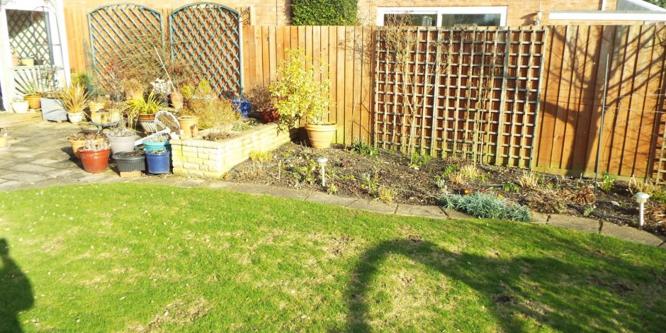 New Lawn treatment, Kineton Warwickshire