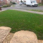 Heavily Scarified Lawn