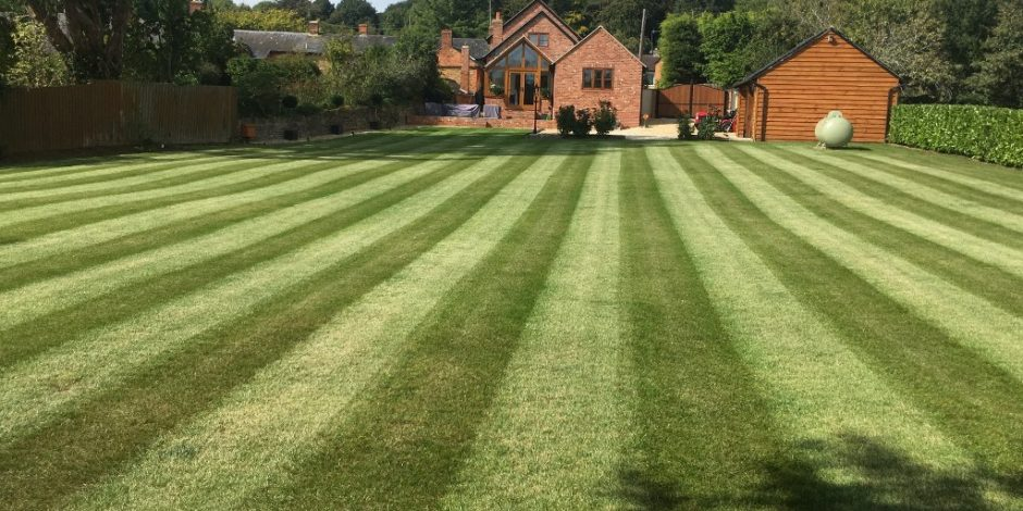 Brailes Lawn treatments