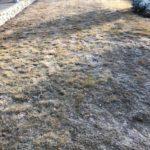 Lawn Renovation Taynton