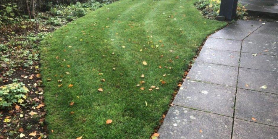 Sulgrave Lawn restoration