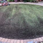 Hanwell fields, lawn treatment