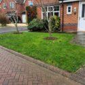 Adderbury Lawn Repair